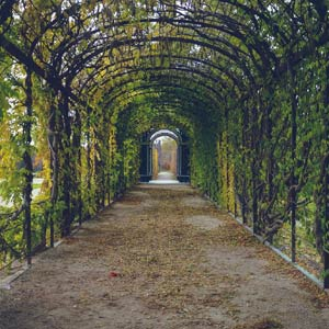 Garden Wedding Venues In NAPLES