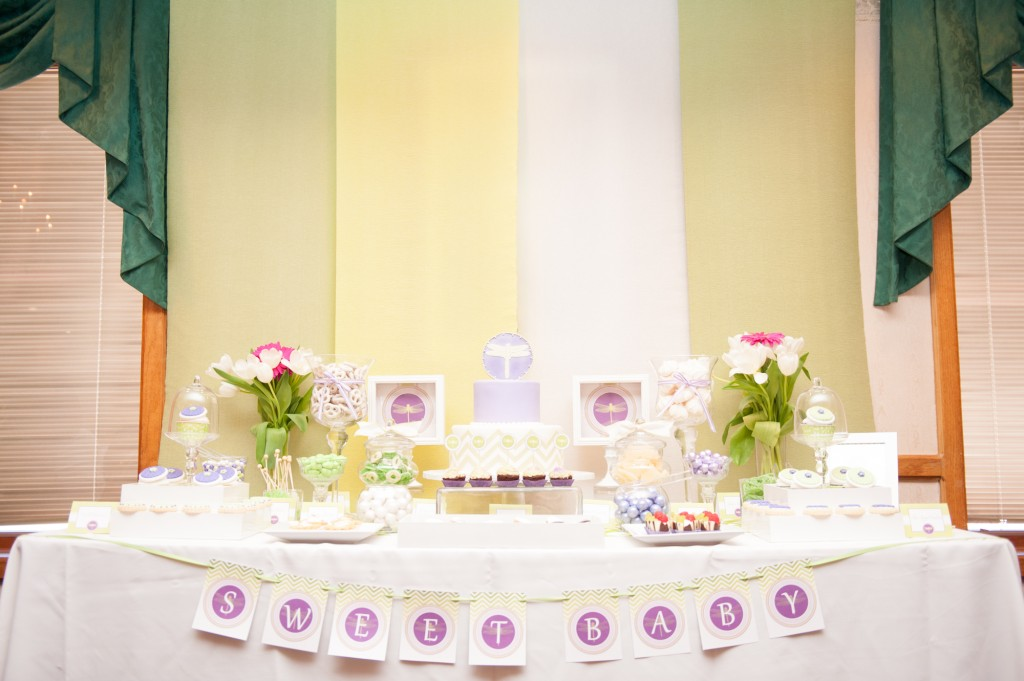 dragonfly_baby_shower_photos_by_chanu_kim_2