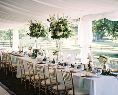 Unlimited-Party-Event-Rental_Chilvari-Chairs_White_Greenery-Farm-Table-Atlanta-Georgia