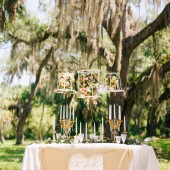 Perfect-Outdoor-Setting-for-Southern Wedding-occasionsonline-033