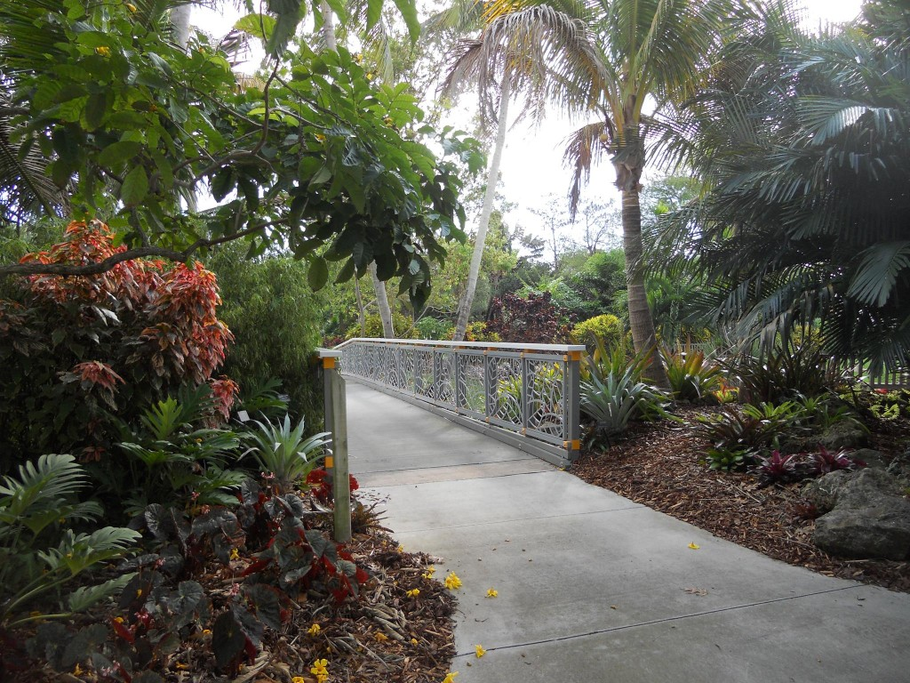 Jacksonville Botanical Gardens Botanical Gardens In Florida Botanical Gardens Jacksonville Fl