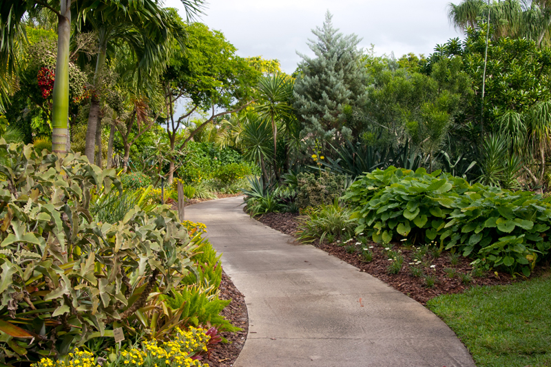 Top 6 Garden Wedding Venues Florida Fairchild Tropical Botanical Gardens001 The Celebration