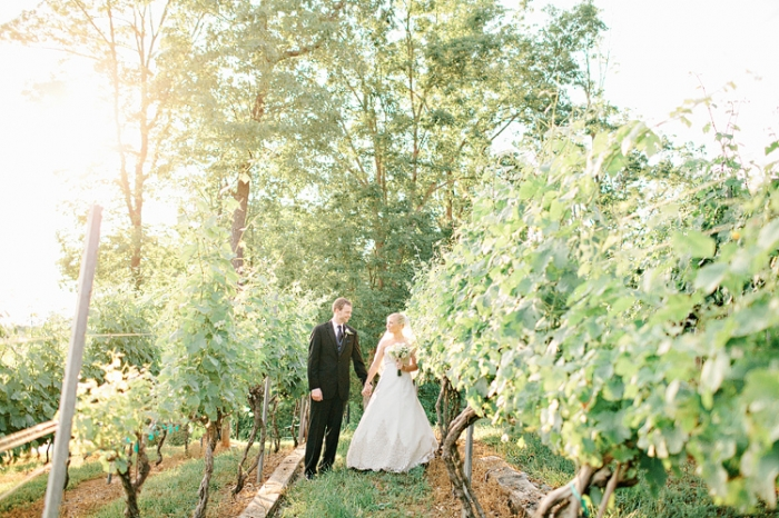 Top 6 Winery And Vineyard Wedding Venues In Georgia Wolf Mountain 003