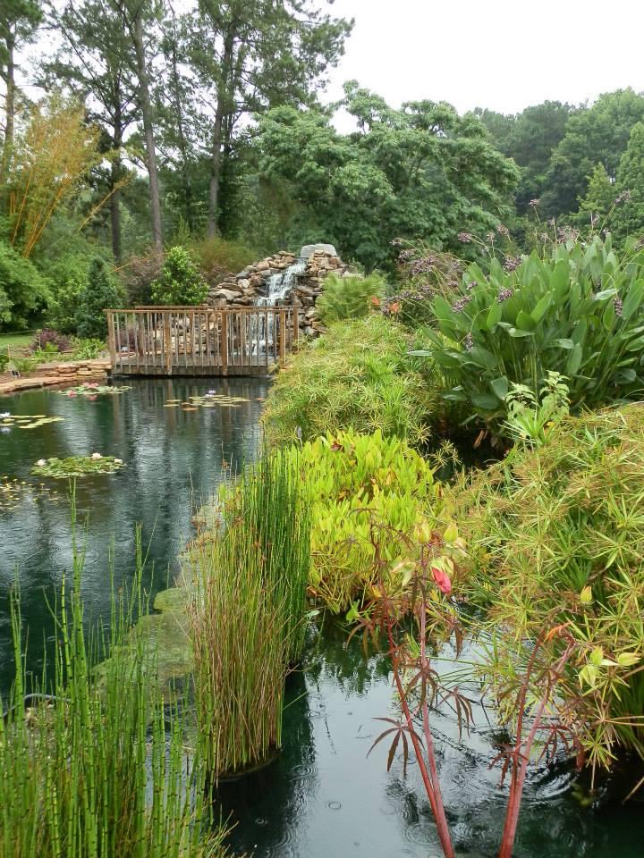 Coastal Botanical Gardens Garden Ftempo