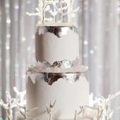 Glamorous_Navy_Silver_and_White_Winter_Wedding_Inspiration_CarmenSalazarPhotography_occasionsonline_015