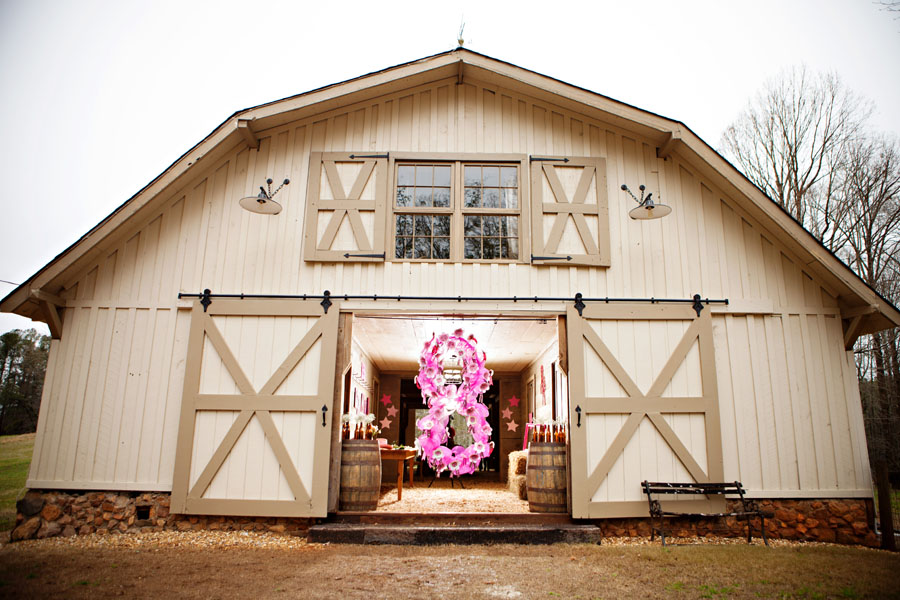 Horse_Themed_Pink_and_Brown_Birthday_Party_35Atlanta_occasionsonline_065