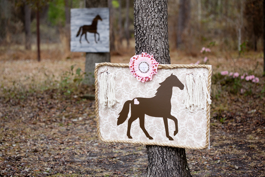 Pink_and_Brown_Pony_Themed_Birthday_Party_ChristyWhiteheadPhotography_occasionsonline_006