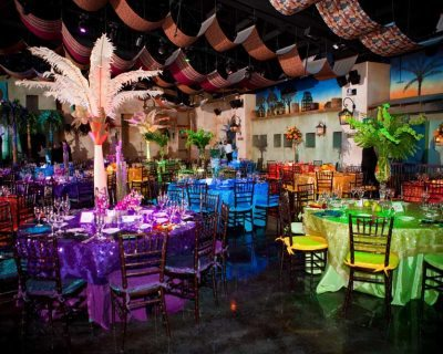 Colorful wedding reception at Tampa's Lowery Park Zoo