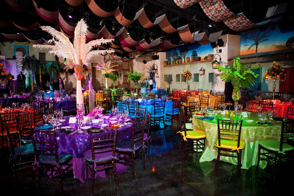 tampas lowry park zoo wedding venues in tampa florida