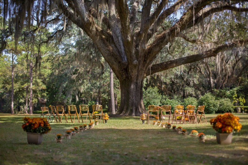Autumn Wedding At Eden Gardens State Park