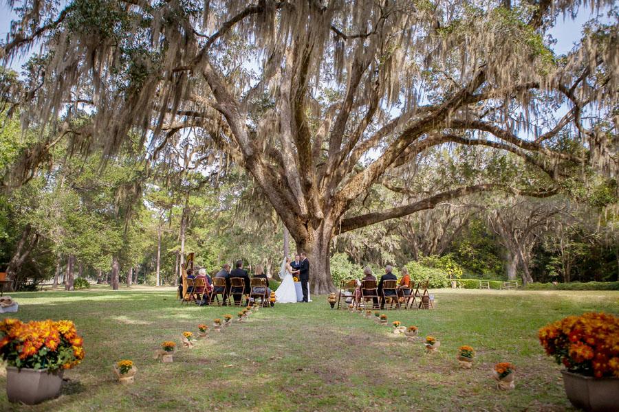 Eden Gardens State Park Wedding Tree Garden Ftempo
