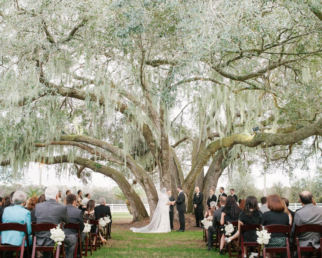 Rocking h ranch barn wedding venue in lakeland fl for Places to have receptions for weddings