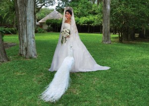 Fountain-of-Youth-Bride