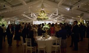 Geri Sims Wedding Drapery
