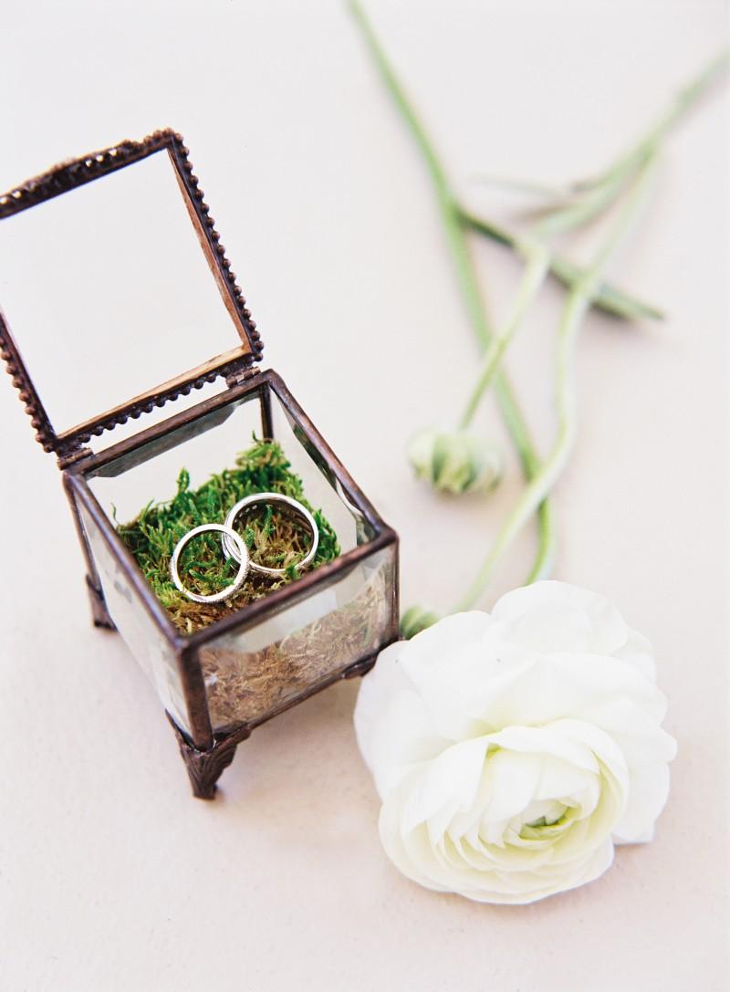 Details - Rings 2