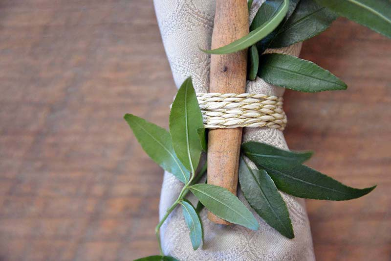 Vinewood Plantation Wedding Photography - Fall 2014 Open House Styled Shoot - Six Hearts Photography033
