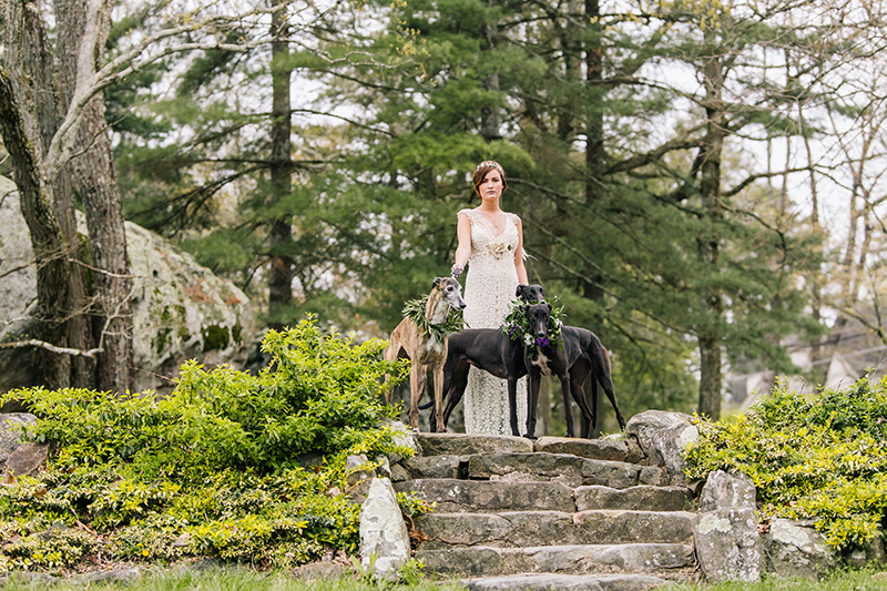 Outdoor Woodland Fairytale Inspired Bride and Dogs