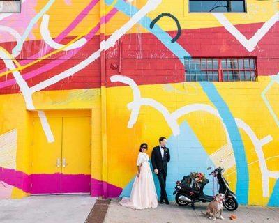 Pet-wedding-photos-Atlanta-wedding-photographer-Vue-Photography