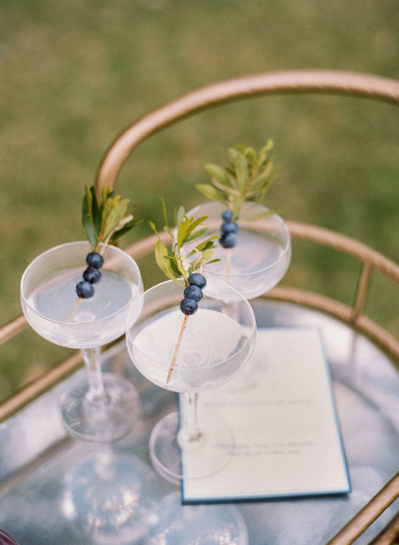 Signature Cocktails with Blueberry Spears