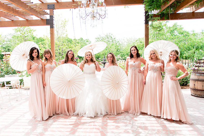 the bride with the bridesmaids in long blush dresses