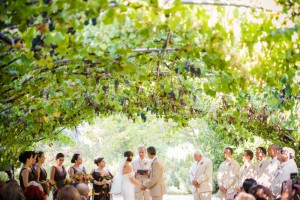 Ceremony shot of hanging purple grapes