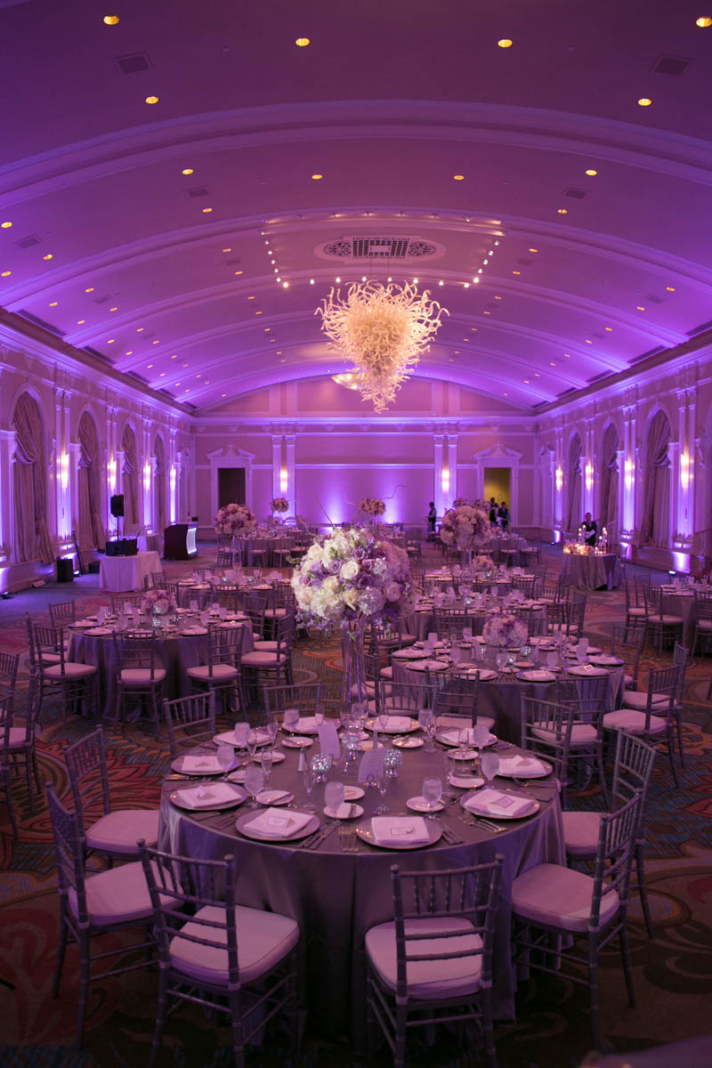 Purple Toned Reception