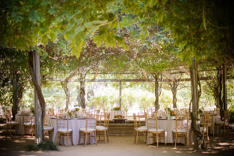 Blissful winery wedding at campovida in hopeland for Wedding spots in california