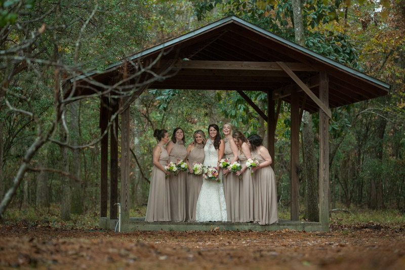 Wedding party tan dresses