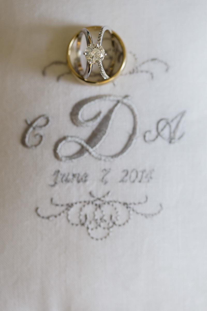 Ring shot with silver inations broidery