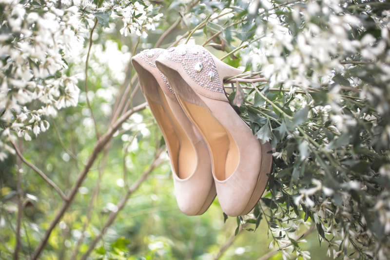 Nude and crystal pumps handing from a tree