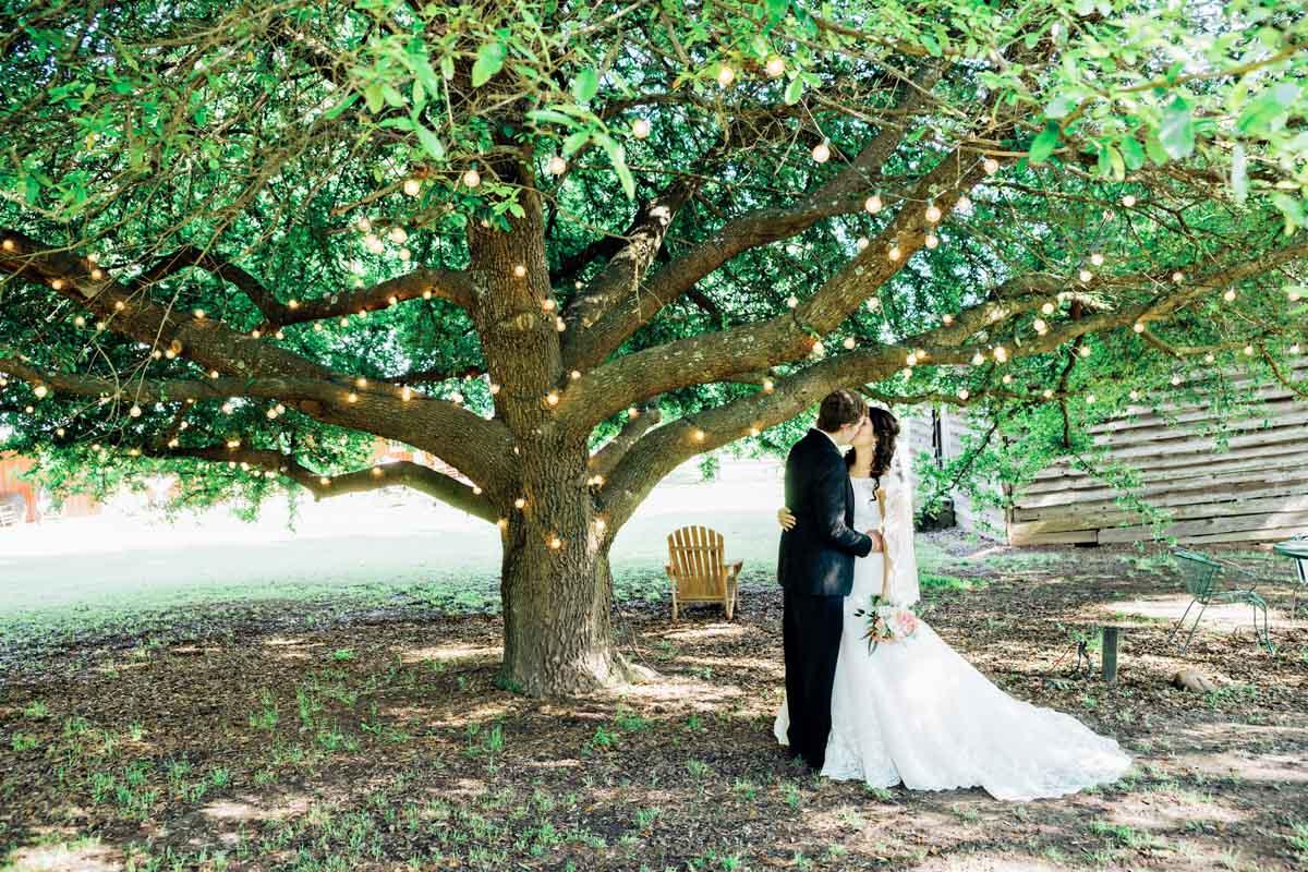 Bride & Groom Kissing Under Tree