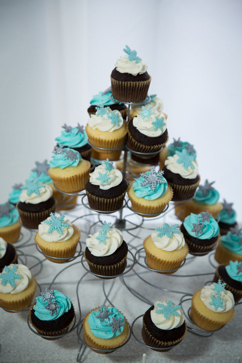 Frozen Themed Chocolate and Vanilla Cupcakes