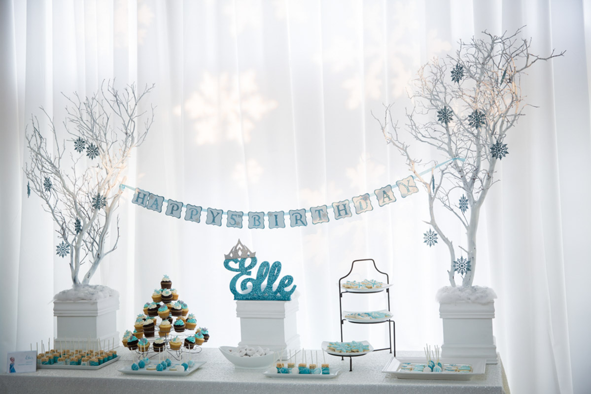 Frozen Themed Dessert Table