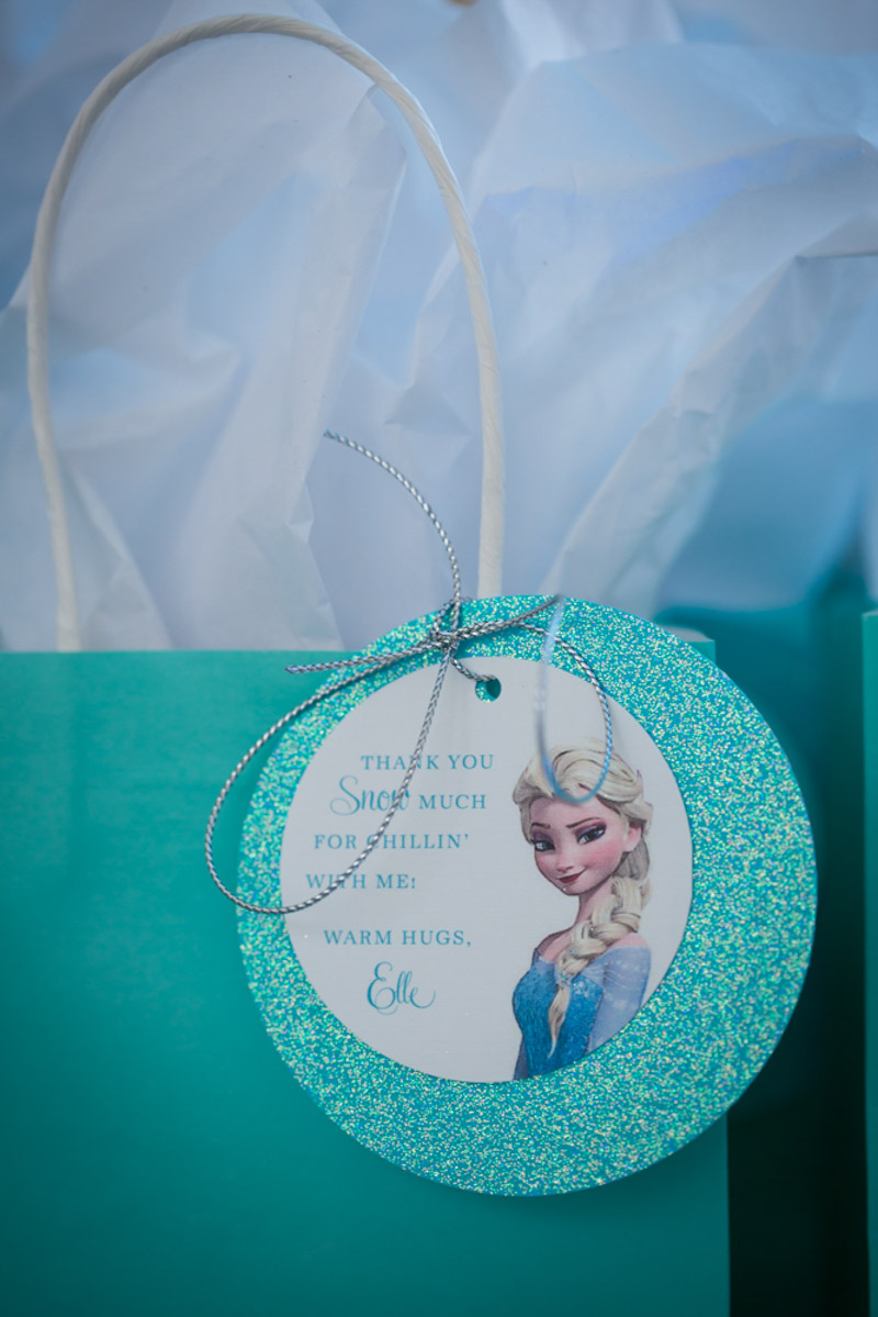 Frozen Themed Gift Bags