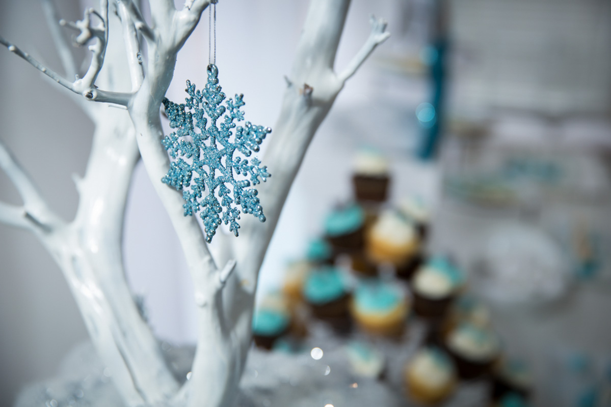 Frozen Themed Party Decor Snowflake