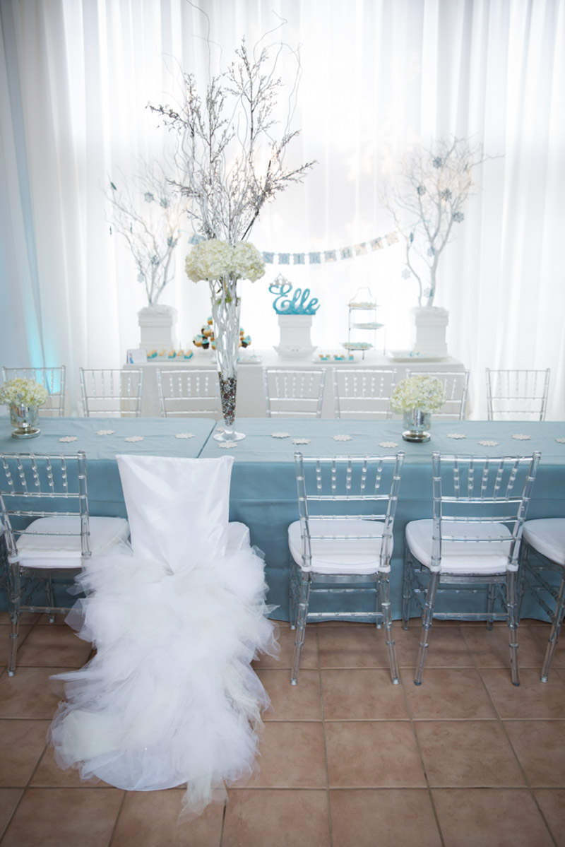Party Table Frozen Themed Chair Decor