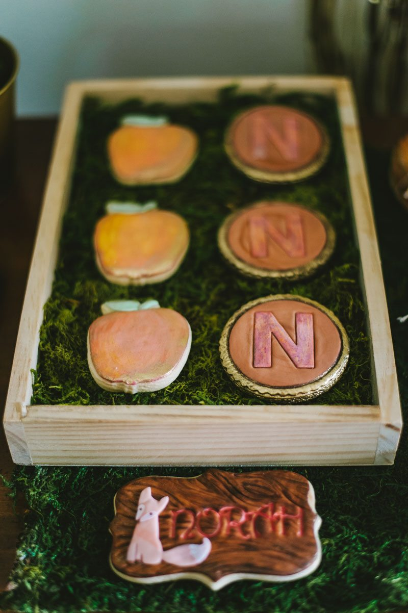 Wise Owl Woodland Styled Cookies With Guest of Honor Initial