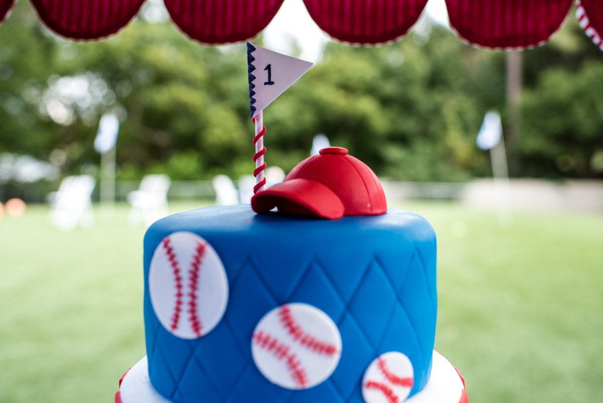 baseball details on dogs first birthday cake