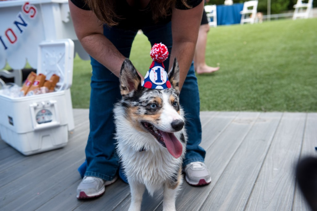 Patriotic Dog Birthday Party At Orlando Canine Country Club In FL
