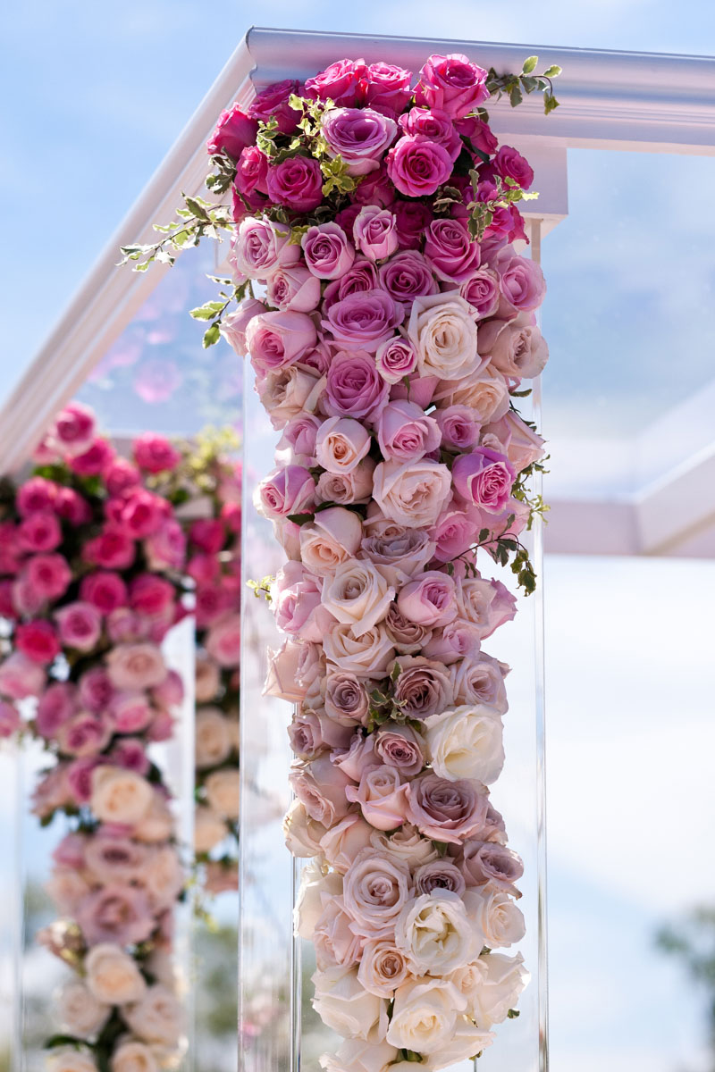 Ceremony Roses