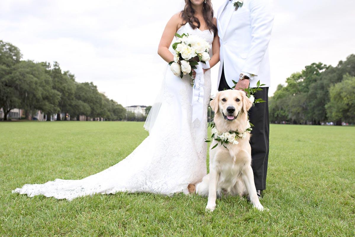 golden retreiver at a preppy southern wedding