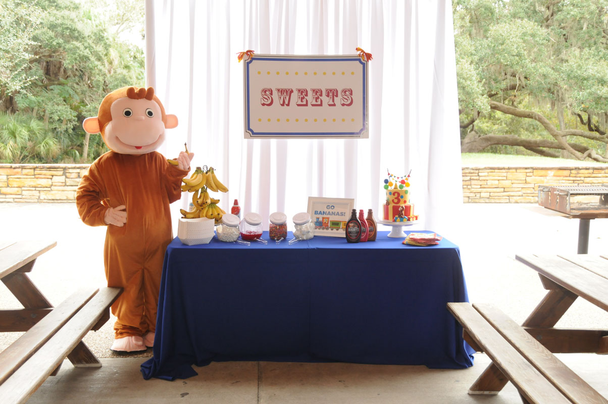 Sweets Table & Curious George Costume