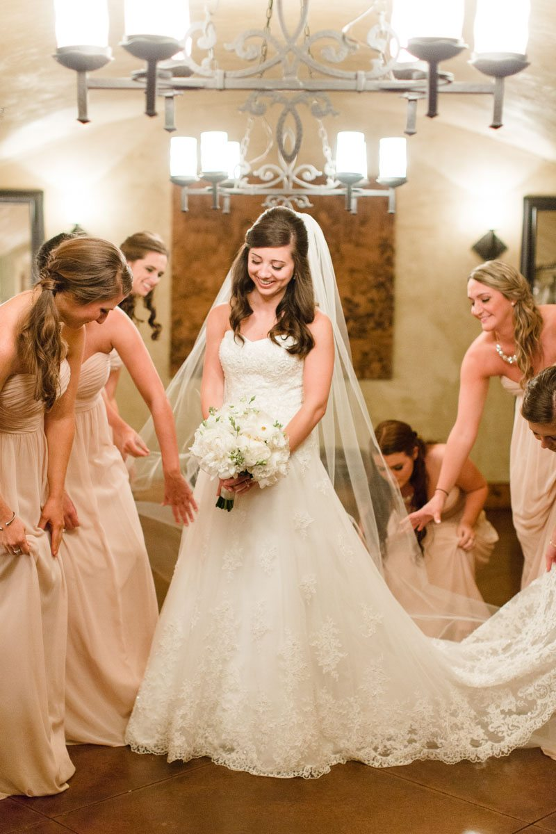 Bride in strapless white lace a line while bridesmaids in pale pink fluff dress and veil