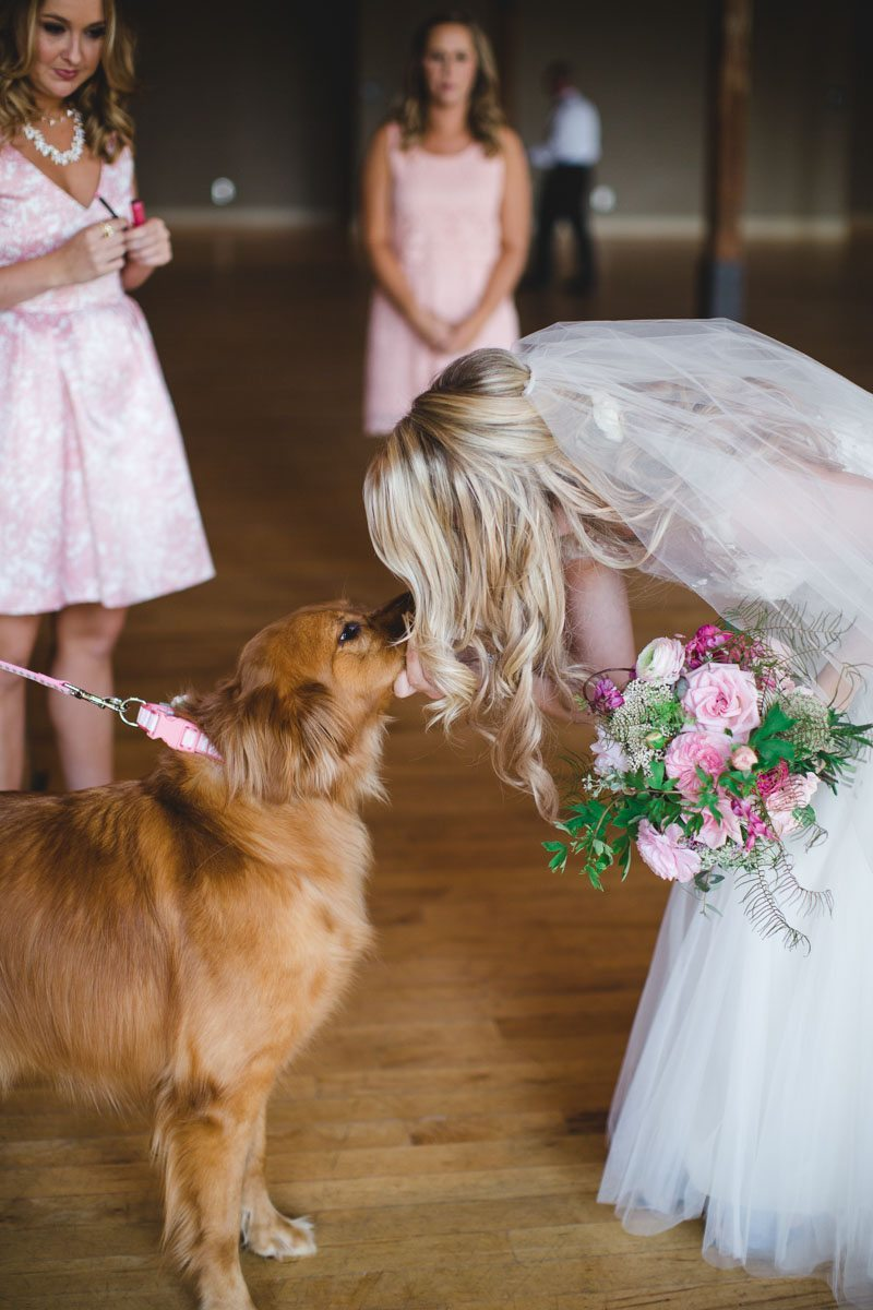 Bride kissing yellow dog ErinStephan_137