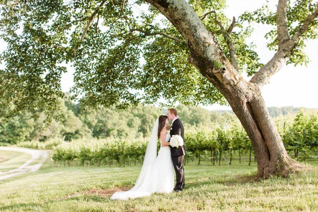 Groom kissing bride forehead outside under tree