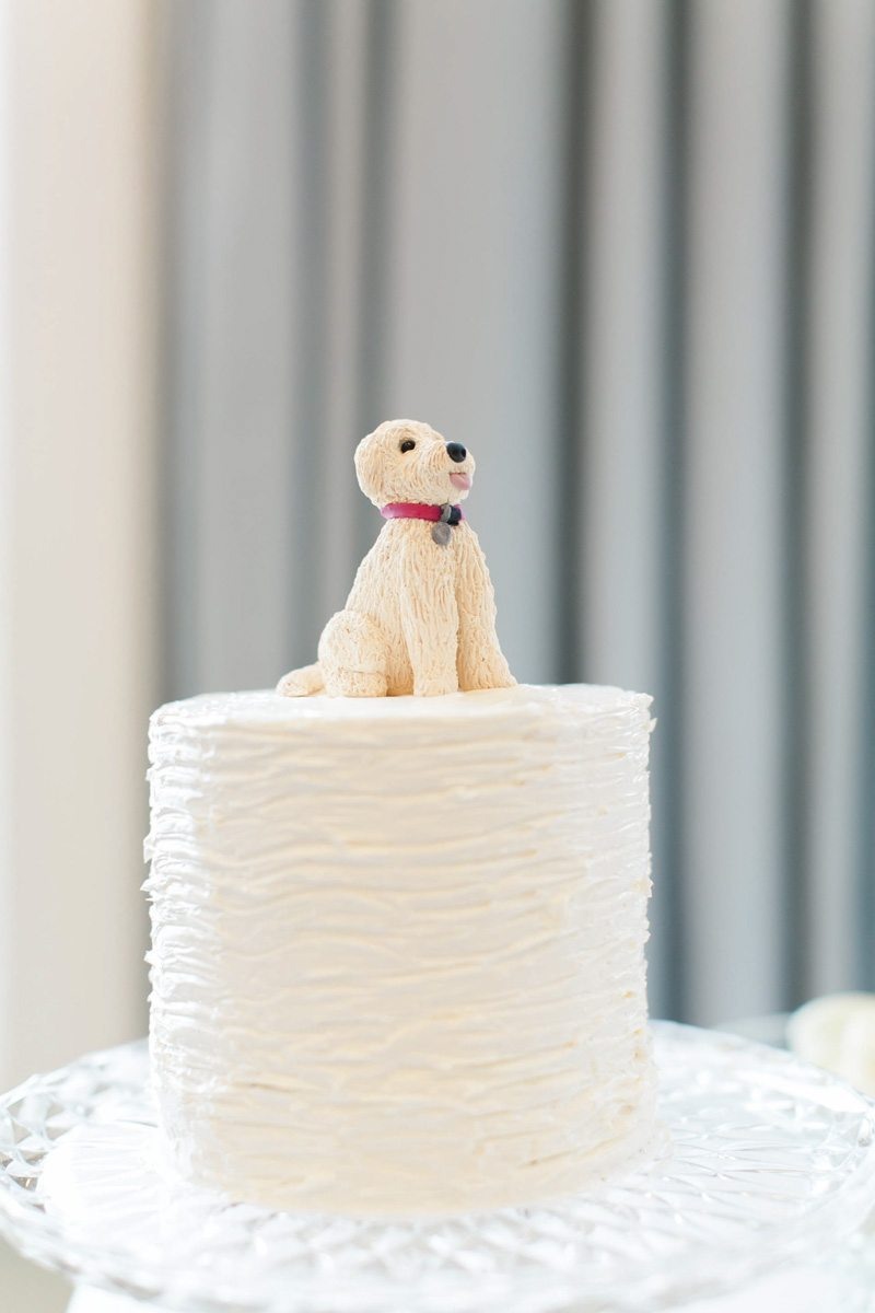 Close up of Wedding Cake Featuring a dog on top Ashley Steeby Photography Destination Weddings www.AshleySteeby.com | Asteeby@gmail.com