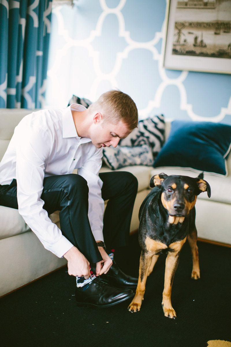 groom dog candid