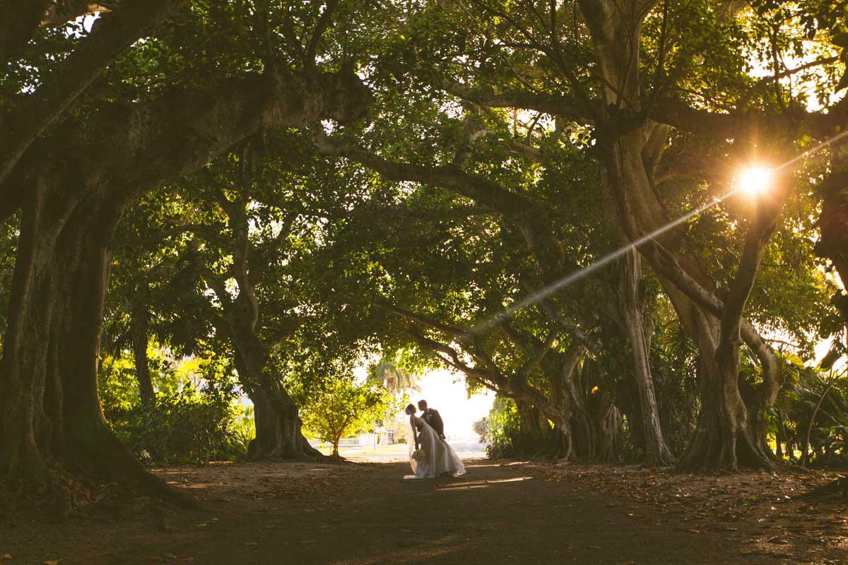 _Bride and groom outside under tree canopy TAWed0653