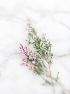 simple pastel purple floral wedding decorations
