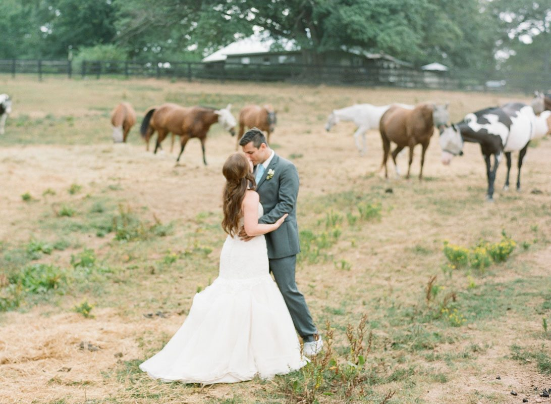 bride-and-groom-horse-field-anna-shakleford-52